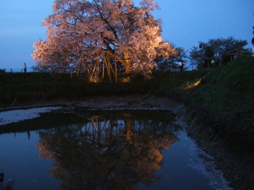 2008_0414asai0029_4