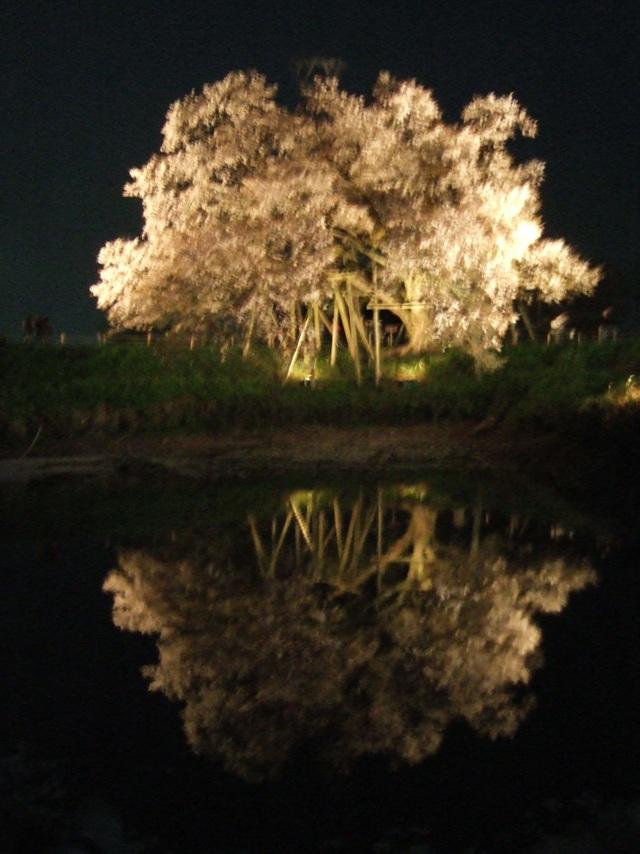 2008_0414asai0040